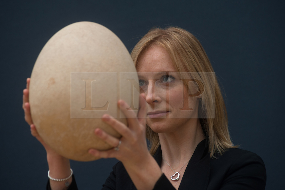 © Licensed to London News Pictures. 27/03/2013. London, UK. An employee at Christie's auction house holds a complete sub-fossilised elephant bird egg on March 27, 2013 in London, England. This elephant bird egg which measuring 100 times the average size of a chicken egg is expected to fetch 30,000 GBP when it features in Christie's sale, which is to be held on April 24, 2013..Photo credit : Peter Kollanyi/LNP