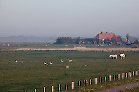 Texel, the Netherlands
