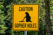"""""""CAUTION GOPHER HOLES"""" sign, seen from Southern Yellowhead Highway BC-5, south of Valemount,  in the Monashee Mountains, part of the Columbia Mountains, British Columbia, Canada."""