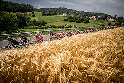 Peloton near Moravce during Stage 2 of 24th Tour of Slovenia 2017 / Tour de Slovenie from Ljubljana to Ljubljana (169,9 km) cycling race on June 16, 2017 in Slovenia. Photo by Vid Ponikvar / Sportida