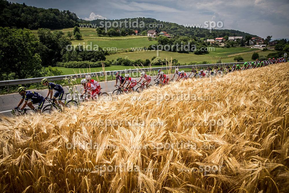 Peloton near Moravce during Stage 2 of 24th Tour of Slovenia 2017 / Tour de Slovenie from Ljubljana to Ljubljana (169,9 km) cycling race on June 16, 2017 in Slovenia. Photo by Vid Ponikvar / Sportida