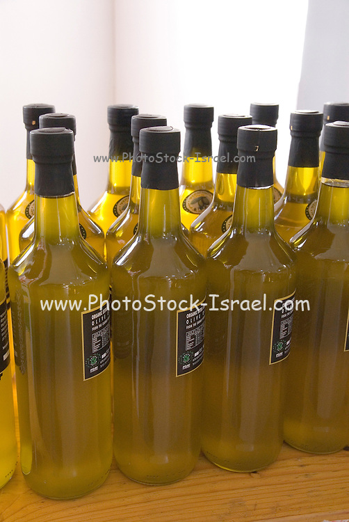 Bottles of freshly pressed olive oil