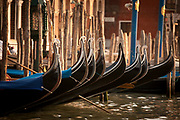 Gondolas showing their ornate detail, waiting for riders on Grand Canal, Venice, Italy