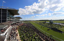Runners and Riders during The British Stallion Studs EBF Westow Stakes during day two of the Dante Festival at York Racecourse.