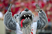 Sep 10, 2011; Little Rock, AR, USA; The New Mexico Lobos mascot raises his hands during the first half of a game against the Arkansas Razorbacks at War Memorial Stadium.  Mandatory Credit: Beth Hall-US PRESSWIRE
