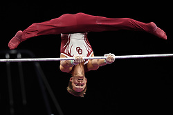 August 18, 2018 - Boston, Massachussetts, U.S - ALLEN BOWER practices on the high bar during the warm up period before the final round of competition held at TD Garden in Boston, Massachusetts. (Credit Image: © Amy Sanderson via ZUMA Wire)