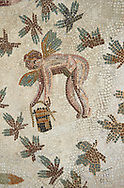Picture of a Roman mosaics design depicting cupids picking grapes, from the ancient Roman city of Thysdrus. 3rd century AD, House of Dolphins. El Djem Archaeological Museum, El Djem, Tunisia. .<br /> <br /> If you prefer to buy from our ALAMY PHOTO LIBRARY Collection visit : https://www.alamy.com/portfolio/paul-williams-funkystock/roman-mosaic.html . Type - El Djem - into the LOWER SEARCH WITHIN GALLERY box. Refine search by adding background colour, place, museum etc<br /> <br /> Visit our ROMAN MOSAIC PHOTO COLLECTIONS for more photos to download as wall art prints https://funkystock.photoshelter.com/gallery-collection/Roman-Mosaics-Art-Pictures-Images/C0000LcfNel7FpLI