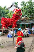 Unicorn Dance, Chinese Dragon,  My An Hung, Farming village, Mekong River, Vietnam, Asia
