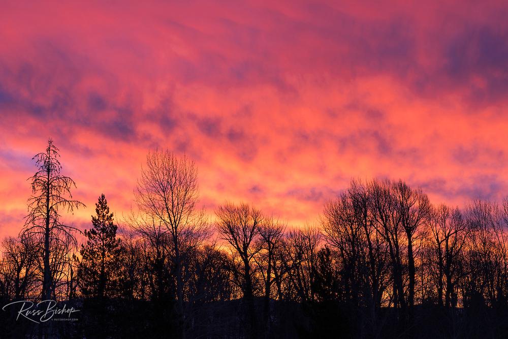 Sunrise silhouette, Grand Teton National Park, Wyoming USA