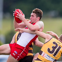 BRISBANE, AUSTRALIA - JUNE 17:  during the NEAFL Round 12 match between Aspley Hornets and Sydney Swans at South Pine Sports Complex on June 17, 2017 in Brisbane, Australia. (Photo by Patrick Kearney/Patrick Leigh Perspectives)