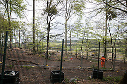 Wendover, UK. 9th May, 2021. A view of a section of ancient woodland at Jones Hill Wood which has been partially felled for the HS2 high-speed rail link. Felling of Jones Hill Wood, which contains resting places and/or breeding sites for pipistrelle, barbastelle, noctule, brown long-eared and natterer's bats and is said to have inspired Roald Dahl's Fantastic Mr Fox, resumed after a High Court judge lifted an injunction preventing further felling and refused an application for judicial review.
