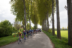 The peloton streches out near the end of the Omloop van Borsele - a 107.1 km road race, starting and finishing in s'-Heerenhoek on April 22, 2017, in Borsele, the Netherlands.