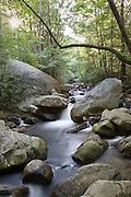 The Middle Saluda River flows over rocks at Jones Gap State Park.