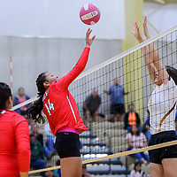 Crownpoint Eagle Robyn Tisi (14) tips the ball past Rehoboth Lynx Sidni Brown (4) Thursday at Rehoboth High School.