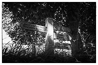 Sign Post on the way in to St David's South Wales