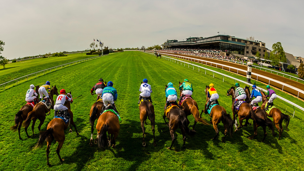 View from the starting gate of a race on the turf course at Keeneland Racecourse, Lexington, Kentucky USA.