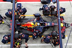 September 1, 2017 - Monza, Italy - Motorsports: FIA Formula One World Championship 2017, Grand Prix of Italy, .#3 Daniel Ricciardo (AUS, Red Bull Racing) (Credit Image: © Hoch Zwei via ZUMA Wire)