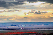 The vineyard at evening sunset under dark storm clouds Bodega Del Fin Del Mundo - The End of the World - Neuquen, Patagonia, Argentina, South America
