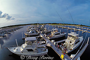 Cayman Islands Yacht Club Marina,<br /> Grand Cayman, <br /> ( Caribbean Sea )