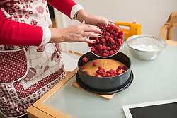 Senior woman spreading raspberries on cake base in spring form pan, Munich, Bavaria, Germany