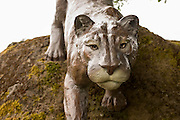 Heather Soderberg created a cougar out of bronze for the city of Cascade Locks in Oregon on the Columbia River.