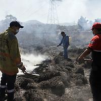 Ocoyoacac, México.- Bomberos de Ocoyoacac y personal de CONAFOR sofocaron un incendio de pasto que se registro en la carretera México-Toluca, a la altura del kilómetro 42, lo que provoco también poca visibilidad a los usuarios de esta carretera.  Agencia MVT / Crisanta Espinosa
