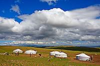 Mongolie, province de Tov, campement nomade // Mongolia, Tov province, nomad camp
