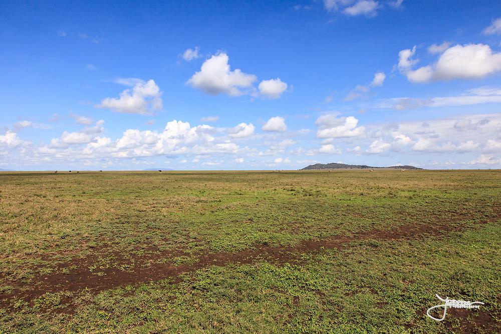 Naabi Hill, Serengeti