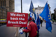 'We Don't back the Brexit deal' reads the Sodem Action sign by the pro EU demonstrators who have been outside parliament on a daily basis since September 2017 after the country voted to leave the European Union. House of Commons, Westminster, London, United Kingdom