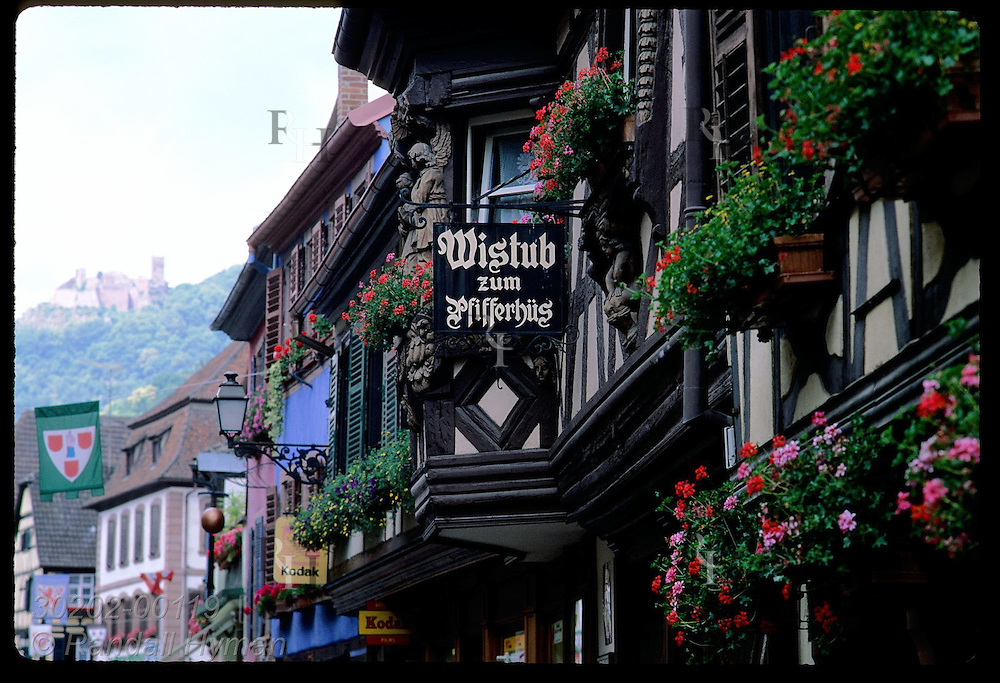Row of half-timbered shops along main street frame distant ruins of St Ulrich castle; Ribeauville France