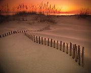 A wooden fence is buried in the sand dunes lining a southern beach