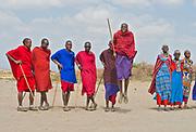 Maasai people jumping and dancing.  Amboseli, Kenya.