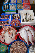 Some of Taiwan's finest seafood delicacies are displayed at a neighborhood street market in Taipei, Taiwan.
