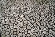Nederland, Nijmegen, 28-7-2018Door de aanhoudende droogte hebben mens en natuur het moeilijk . Doordat regenval uitblijft worden de waterbuffers kleiner en moet het waterpeil van o.a. het IJsselmeer verhoogd worden om aan de vraag, behoefte te voldoen . Gebarsten, gescheurde, grond, bodem van een lege wateropvang, bedoeld voor opvang van hoosbuien .Foto: Flip Franssen