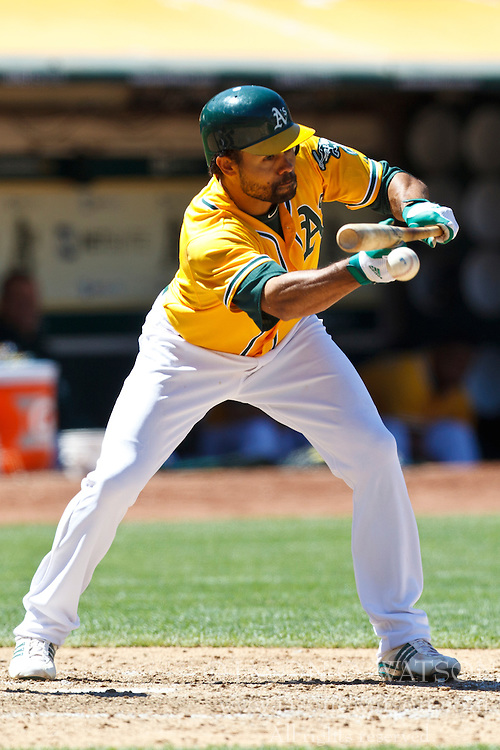 OAKLAND, CA - JUNE 24: Coco Crisp #4 of the Oakland Athletics bunts against the San Francisco Giants during the eighth inning of an interleague game at O.co Coliseum on June 24, 2012 in Oakland, California.  The Oakland Athletics defeated the San Francisco Giants 4-2. (Photo by Jason O. Watson/Getty Images) *** Local Caption *** Coco Crisp