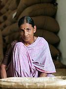 Portrait of coffee bean grader, Malabar, Mangalore, Kerala, India.