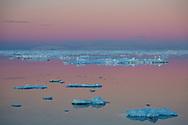 Ice floating in Antarctic Sound, Antarctica