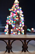 Middletown, NY - Snow covers an iron fence in front of a Christmas tree decorated with lights during a winter storm on Dec. 19, 2008.