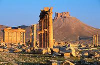 Syrie - Palmyre - Grande colonnade, temple funeraire et chateau arabe