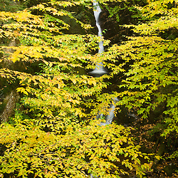 Upper Falls in Dixville Notch State Park, New Hampshire. Fall.