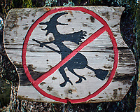 No Fly Zone on Mount Fløyen. Image taken with a Nikon 1 V2 camera and 10-110 mm lens.