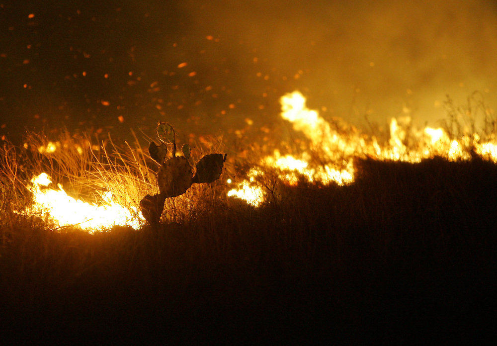 San Manuel, TX - 18 Mar 2008 -.A massive brush fire burns near San Manuel on Tuesday evening..Photo by Alex Jones / ajones@themonitor.com