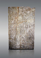 Stone relief sculptured panel of a Genie blessing. From the palace of Assurnasirpal II, Nimrud, circa 865 BC. inv 9848  Louvre Museum , Paris .<br /> <br /> If you prefer to buy from our ALAMY PHOTO LIBRARY  Collection visit : https://www.alamy.com/portfolio/paul-williams-funkystock/ancient-assyria-antiquities.html  Refine search by adding background colour, place, subject, museum etc into the LOWER SEARCH WITHIN GALLERY box to <br /> <br /> Visit our ANCIENT ASSYRIAN PHOTO COLLECTIONS for more photos to download or buy as wall art prints https://funkystock.photoshelter.com/gallery-collection/Ancient-Assyrian-Art-Artefacts-Antiquities-Historic-Sites-Pictures-Images-of/C0000cjRqQyJjLag