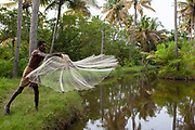 An Indian man doing traditional fishing in the backwaters on 16th November 2009 near Alleppey, Kerela, India.