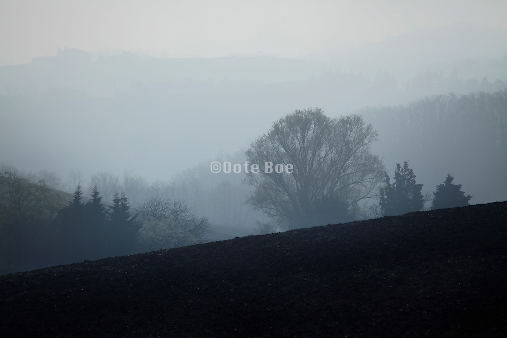 morning fog in rural landscape