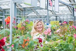 Mature woman looking at flowers in garden centre and smiling, Augsburg, Bavaria, Germany