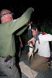 Piers & George Weighing Crocodile