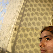 A late afternoon sun shines through a curtain on to a 19 year old Manhaz Dost an Afghan refugee living in an apartment with her parents and eight brothers and sisters in Peshawar, Pakistan. Photo by Louie Palu/The Globe and Mail ©