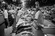 The fish section of the old covered market on the riverside in Manaus, Amazonia, Brazil. Photo by Andrew Tobin/Tobinators Ltd