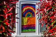 Rainbow drawings in windows - A 'symbol of hope' inspired by a drawing (pictured) by Sir Peter Blake, the artist who designed the cover of The Beatles' Sgt. Pepper album. The Evening Standard asked Sir Peter to create his version while he is in self-isolation. A sunny day and people are out in reasonable numbers, in SW London, to get their daily exercise. But in these areas the fears of teh police dont seem to have been realised as teh numbers are less than yesterday. The 'lockdown' continues for the Coronavirus (Covid 19) outbreak in London.